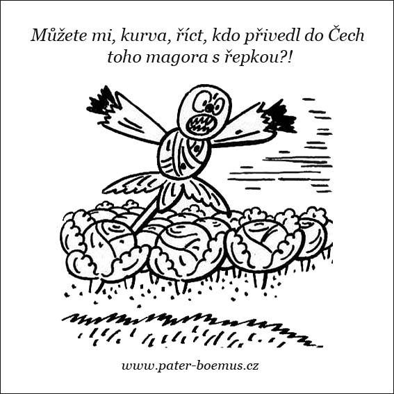 Praotec Čech, pater Boemus, Josef Lada, Hrusice, humoristický vzdělávací časopis