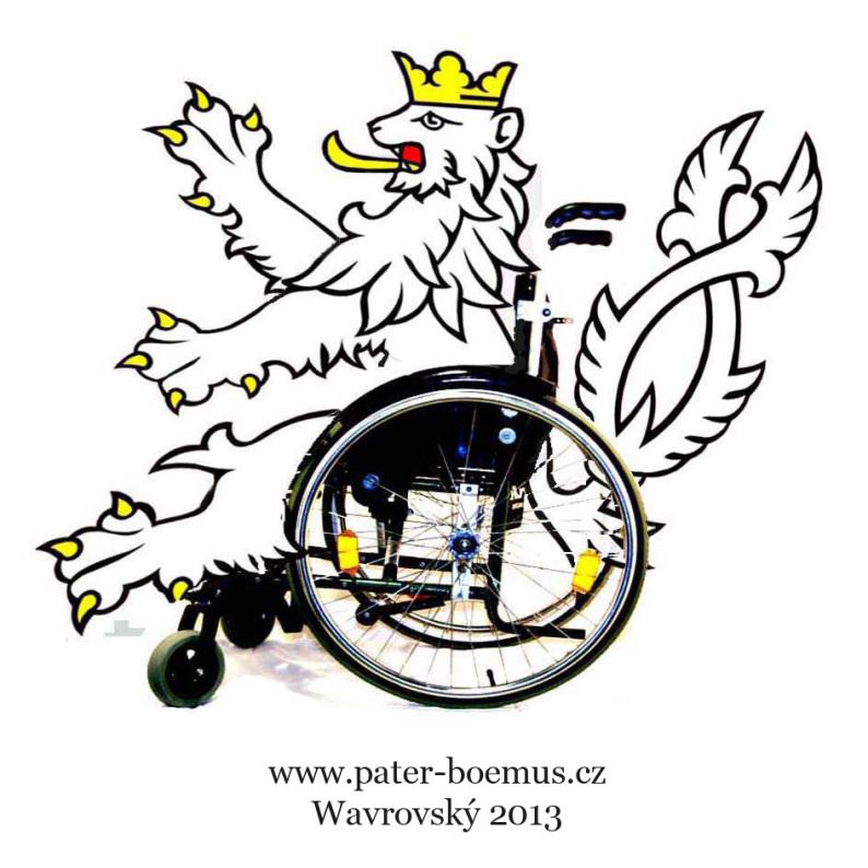 Pater Boemus, humoristický vzdělávací magazín, Wavrovský, Společnost bratranců Veverkových, lev invalida 2013