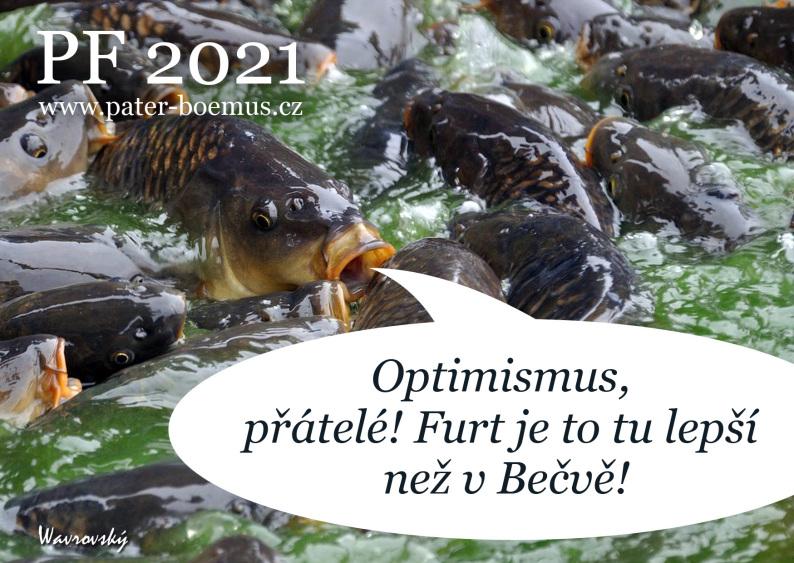 Pater Boemus, humoristický vzdělávací magazín, Wavrovský, praotec Čech, PF 2021, šťastný a veselý, kapři v kádi, optimismus, v Bečvě